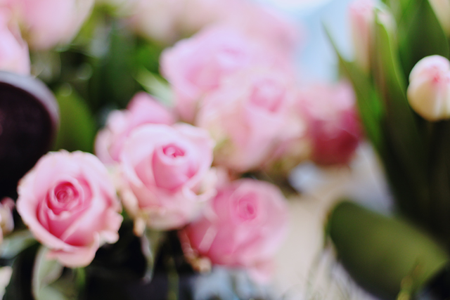 rosa rostig kiel blücherplatz förde fräulein kiel blog blumenladen kiel vintage