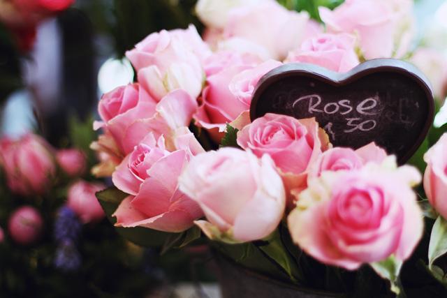 rosa rostig blumenladen kiel blücherplatz förde fräulein