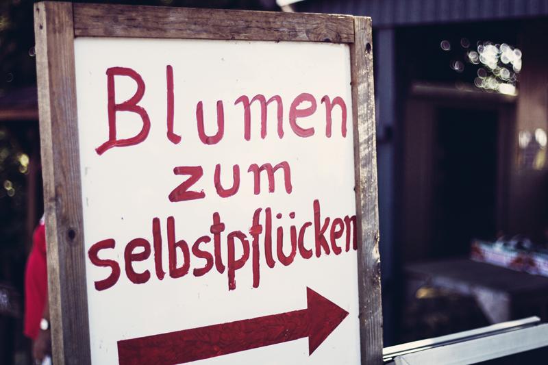 Himbeerhof27