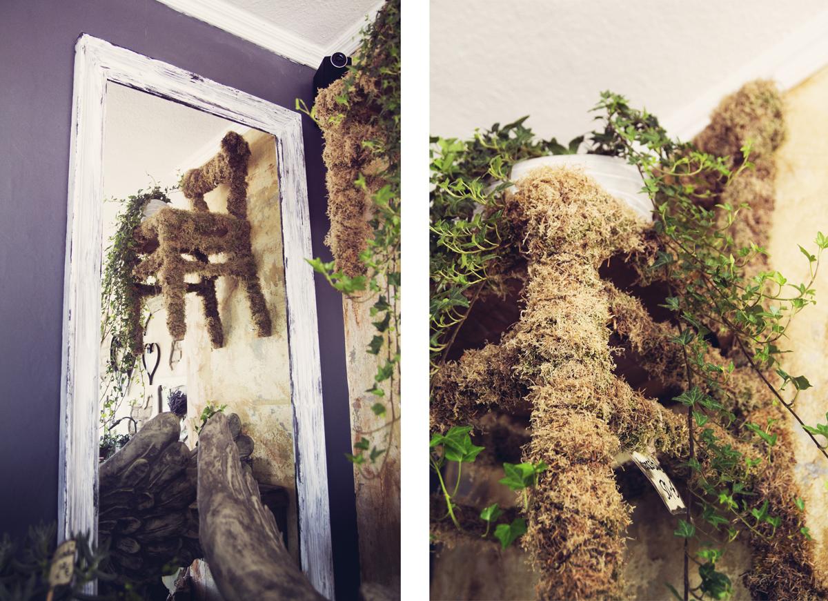 Stuhl-Pflanzen-bewachsen-Steinreich