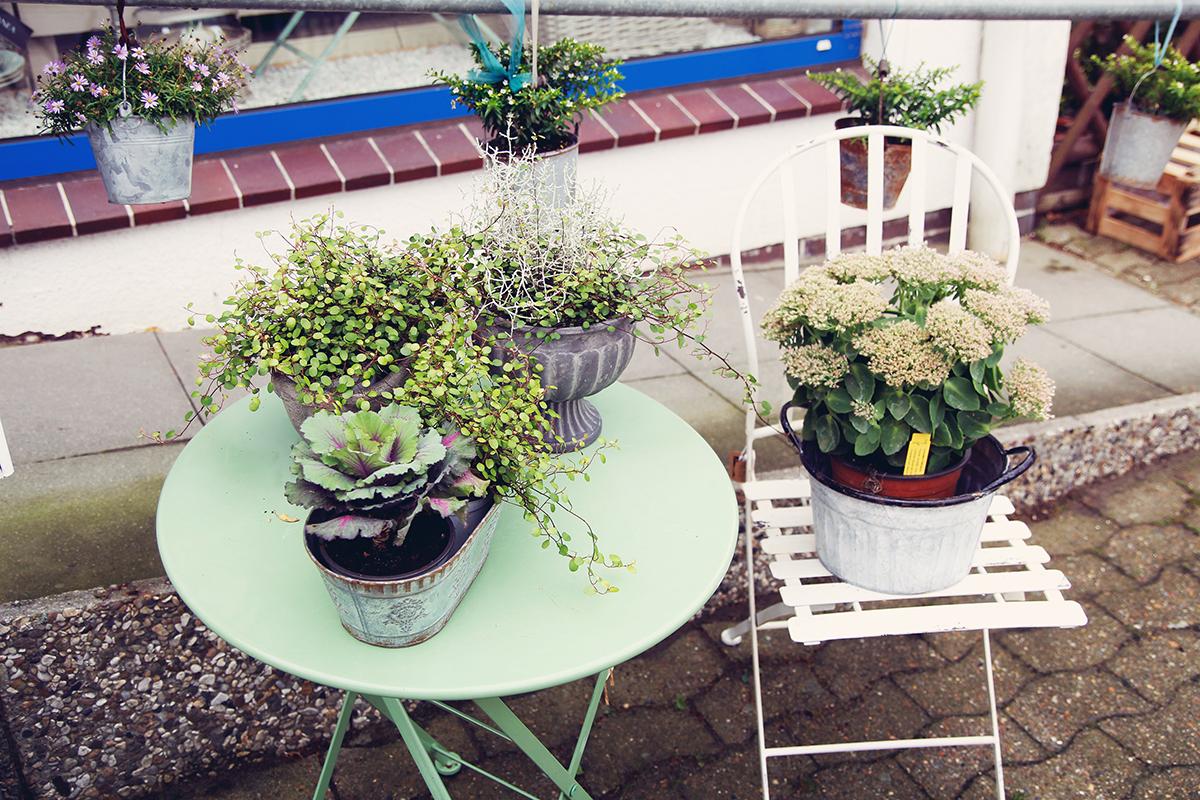 Blumen-Tisch-draussen-frauenzimmer-kiel-daenischenhagen