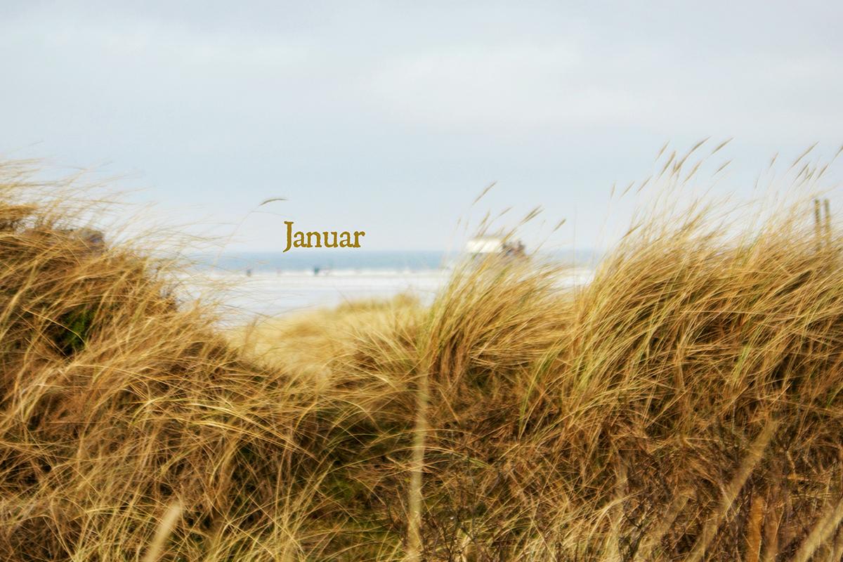 duenenmeer1_FILTER_Januar