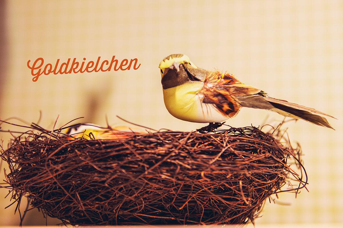 goldkielchen1