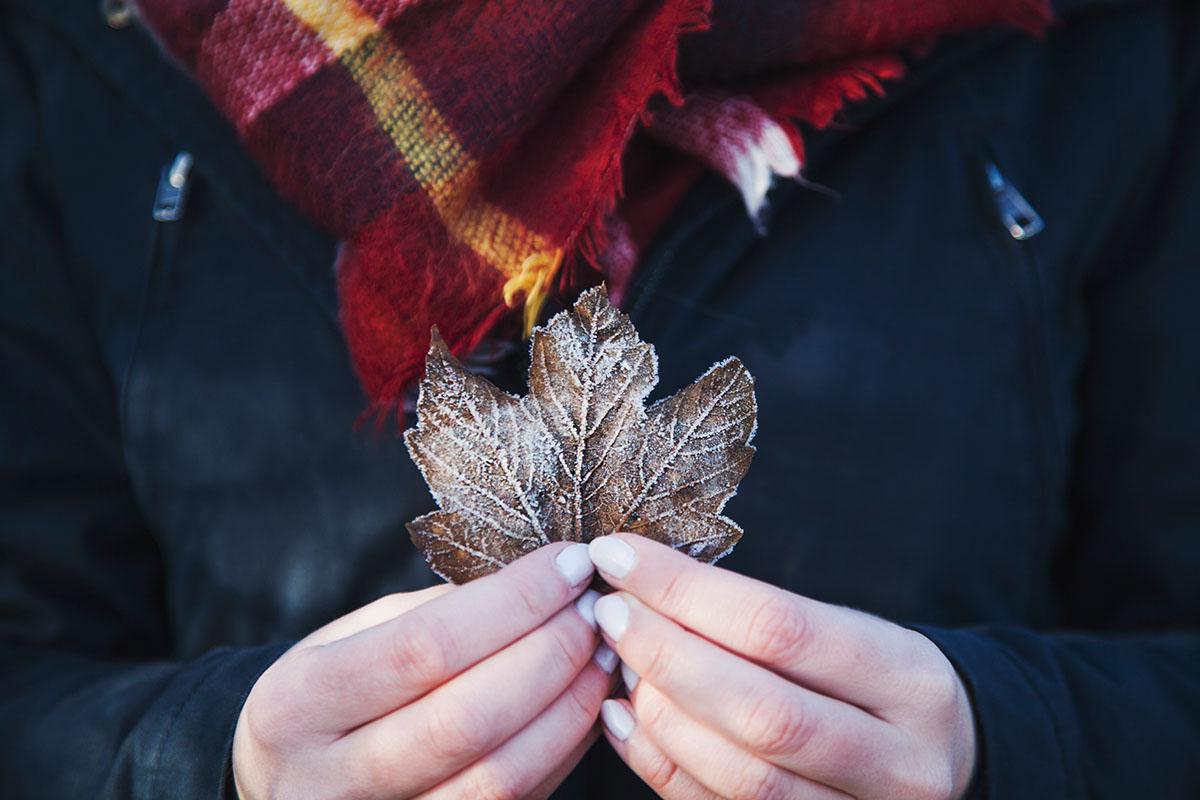 wintertag-kiel-foerdefraeulein-foerde-sonne-ausblick-hdw-kiellinie-derbehamburg-kapuzenpullover-seemansknoten-blau-laub-eis-blatt-2
