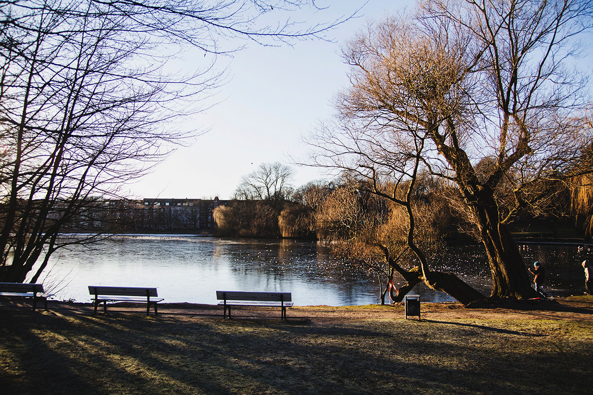 wintertag-kiel-foerdefraeulein-schrevenpark1