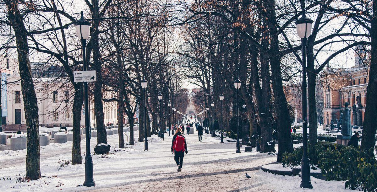 Mit Color Line von Kiel nach Oslo: 10 Orte, die du in Oslo besuchen solltest