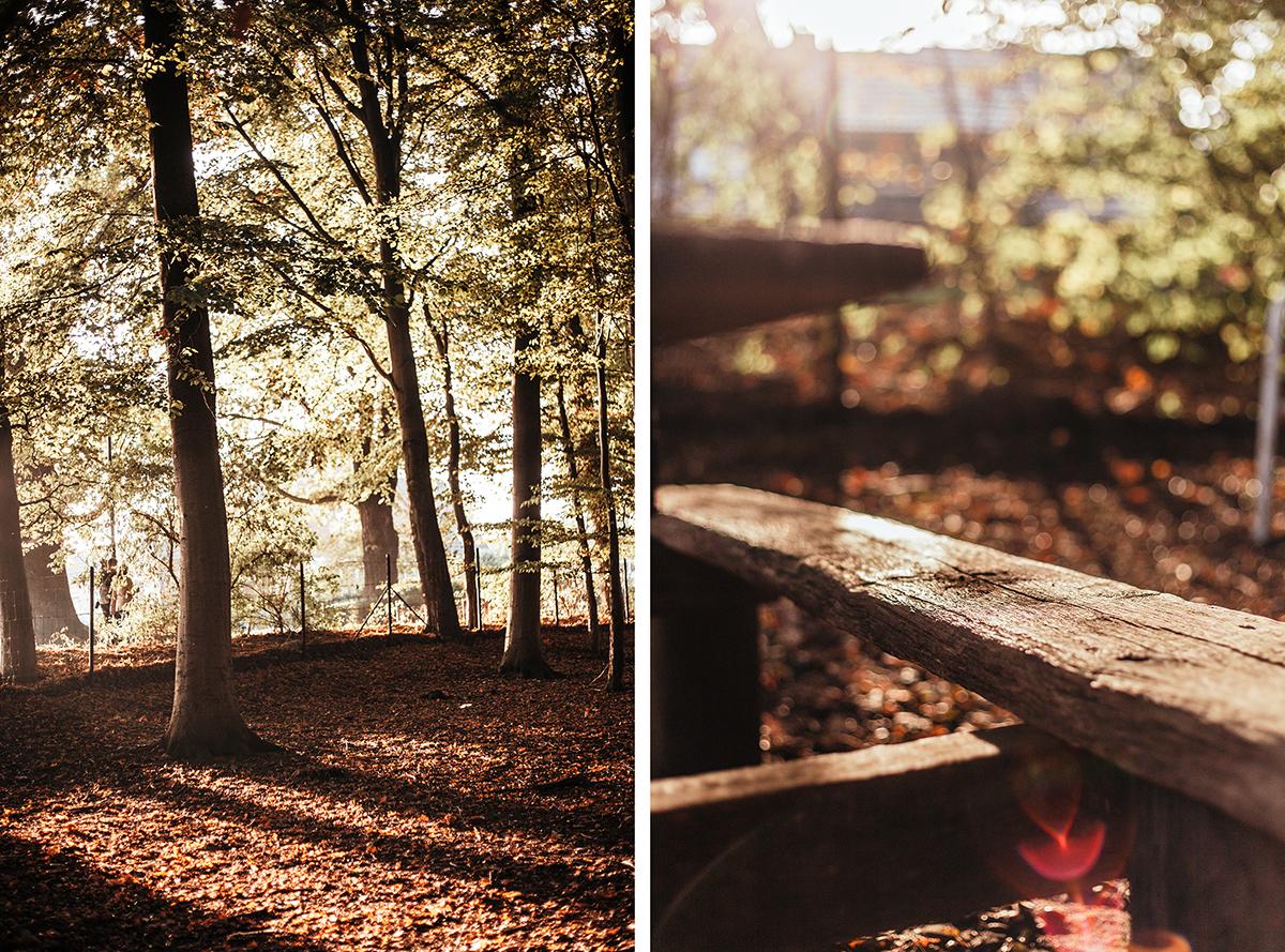 Herbstkranz_DIY_Kiel_Tannenberger-Gehoelz_Herbst