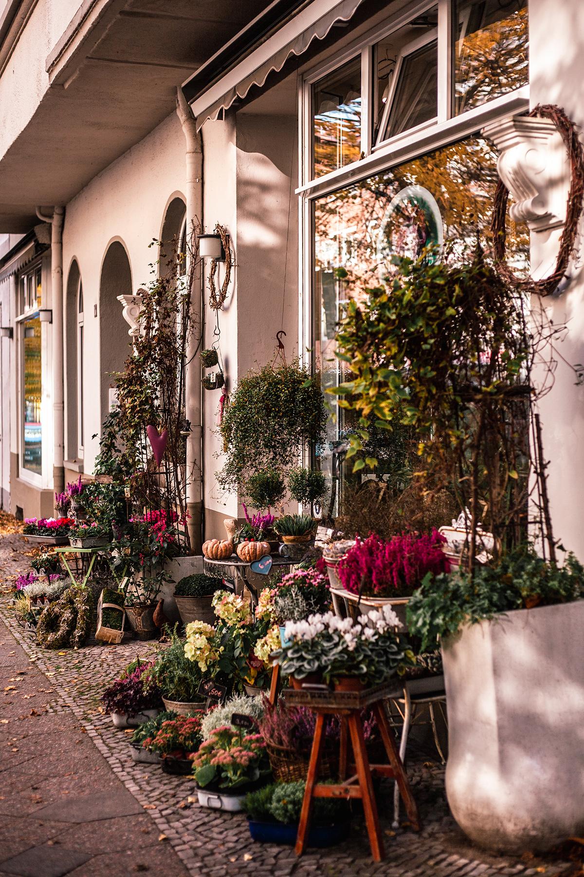 Rosa rostig Blumenladen Kiel