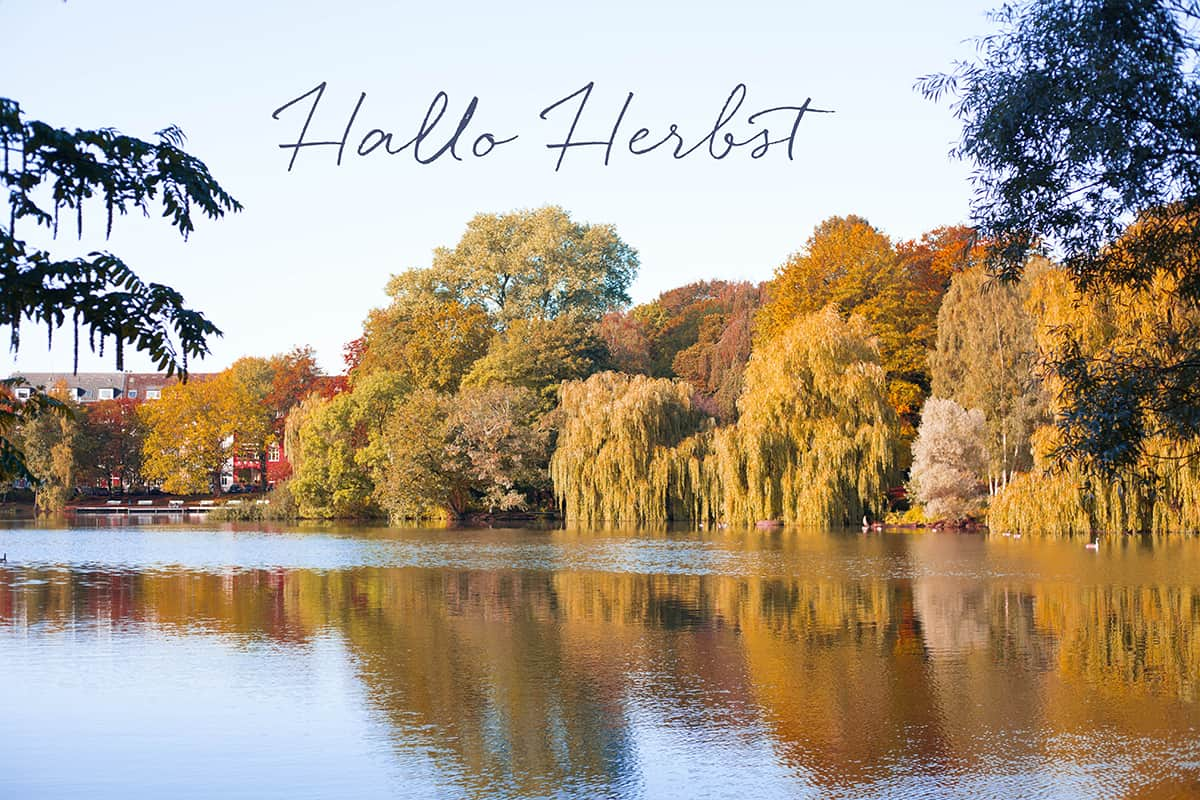 Herbst in Kiel Schrevenpark