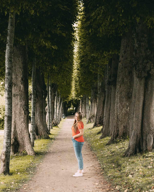 Glücksburg Wasserschloss Schlosspark Baumallee