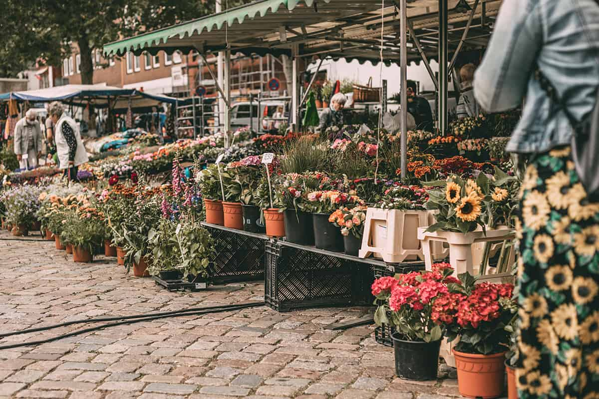 Wochenmarkt in Neustadt