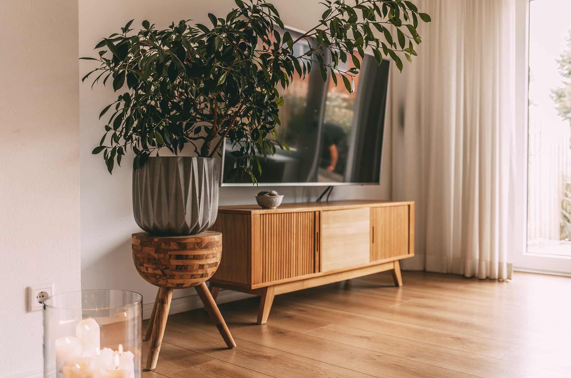 TV Sideboard und Pflanzenständer