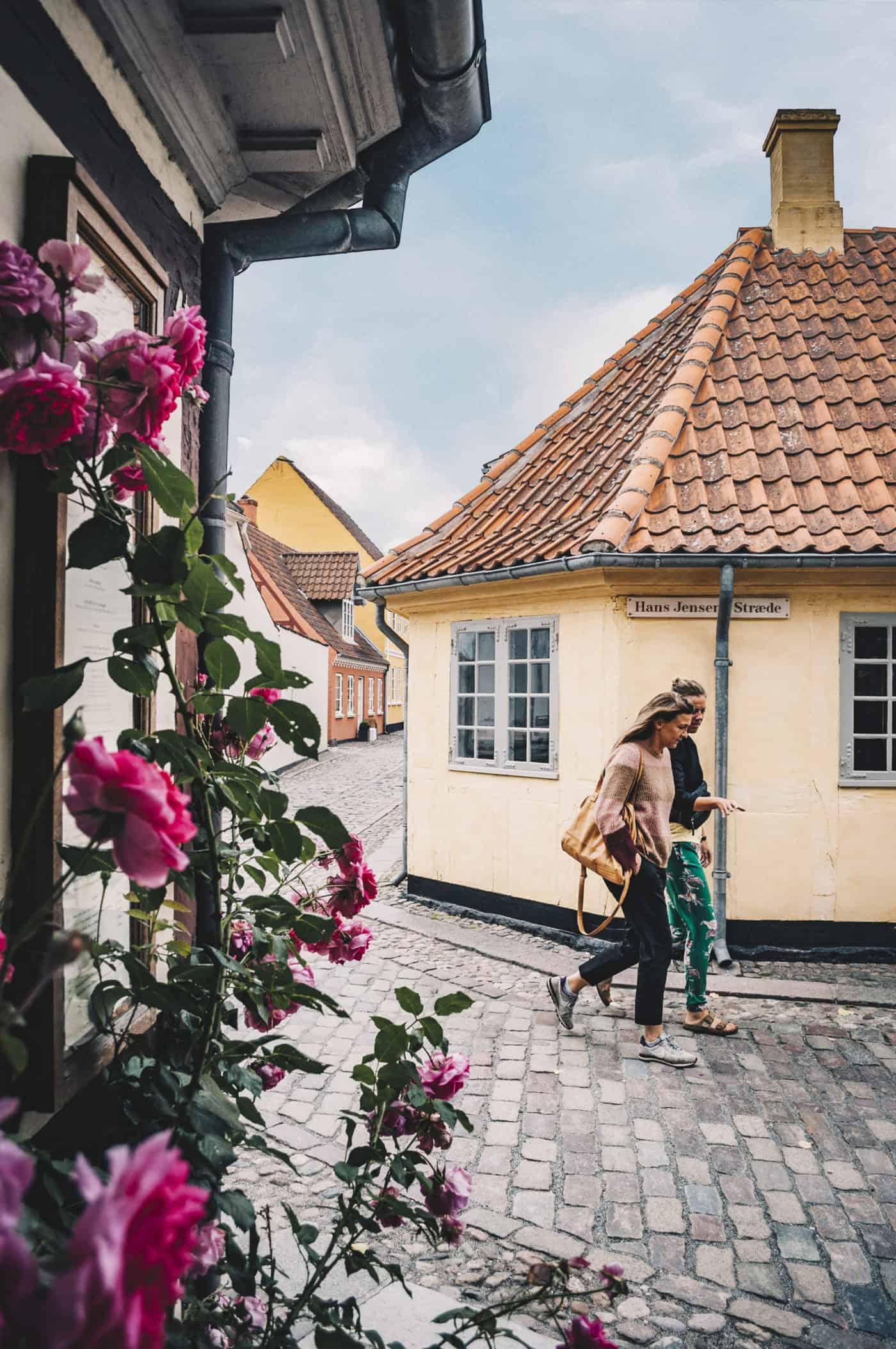 Altstadt Odense