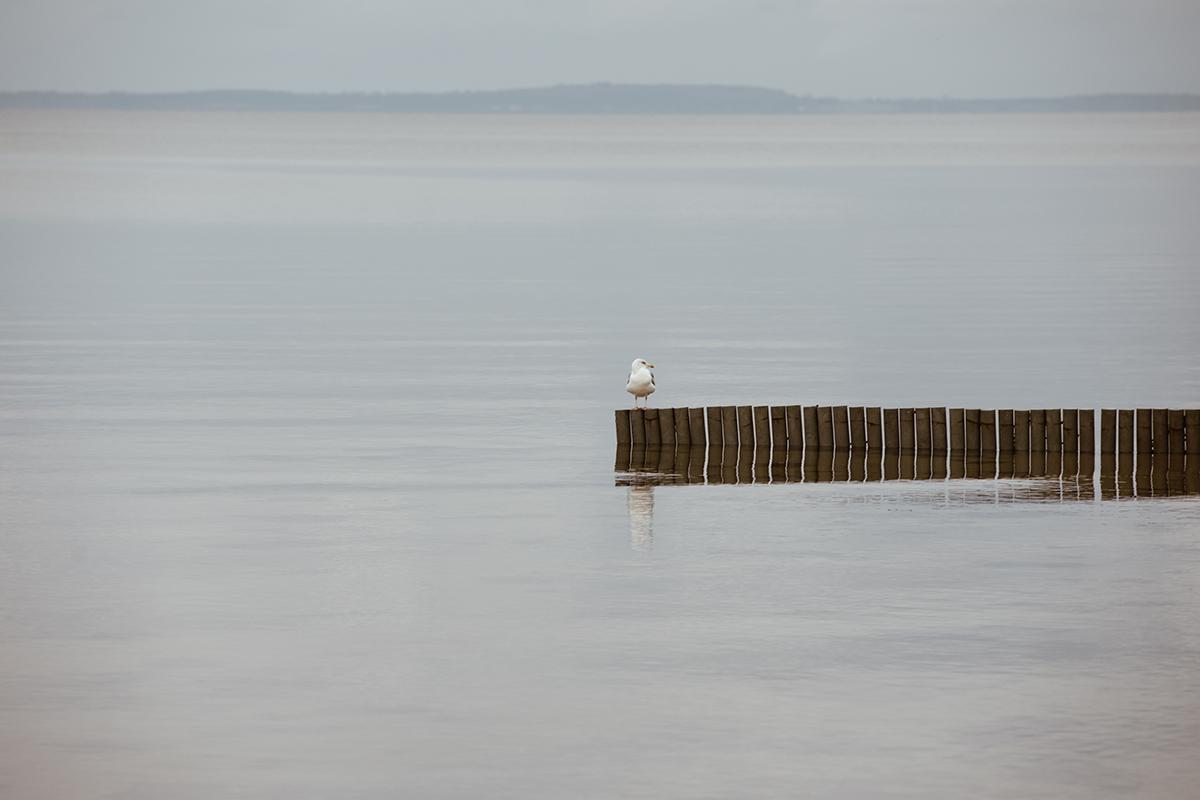 Yachthafen Wackelballig