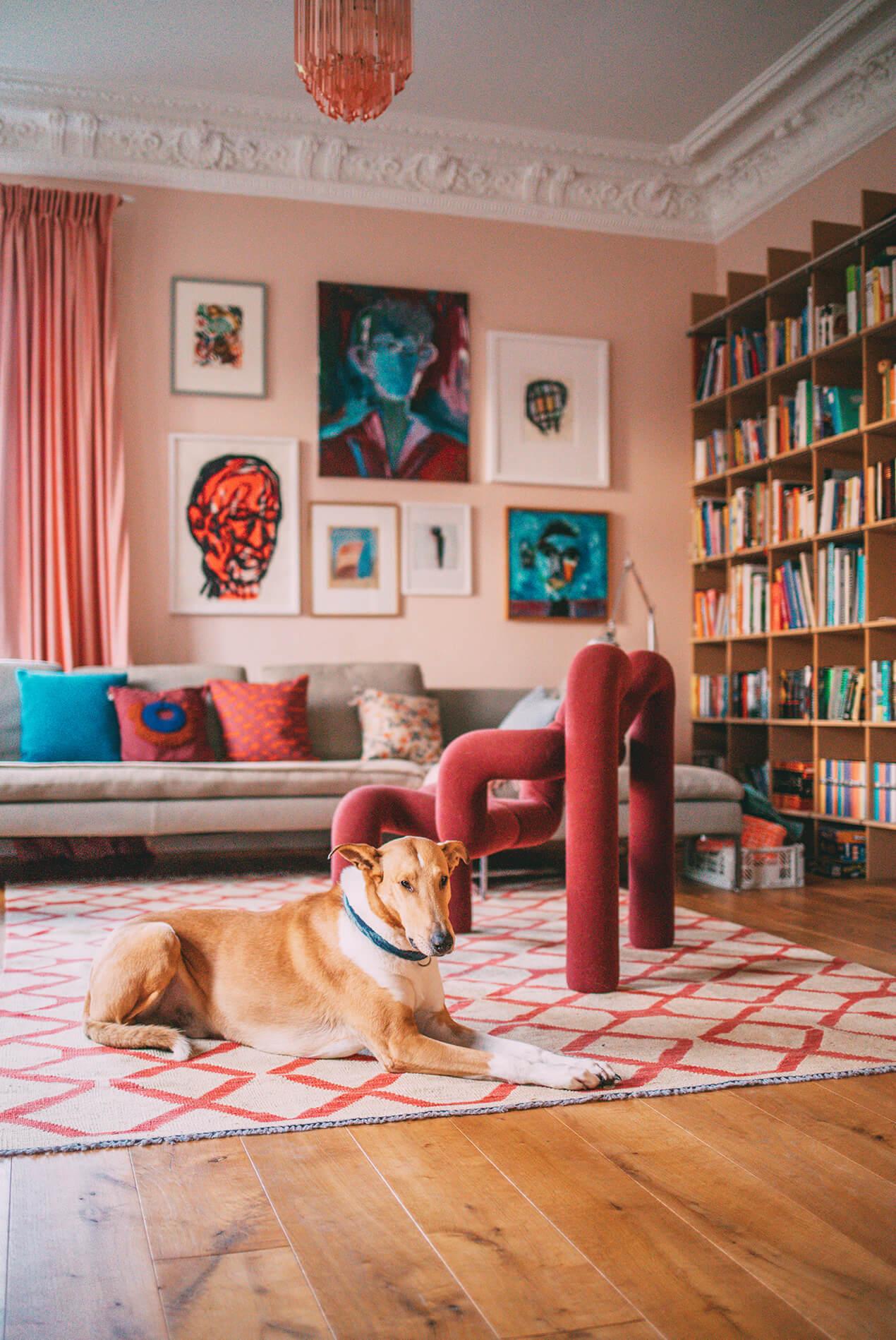 Lumikello: Hund Ede im Wohnzimmer