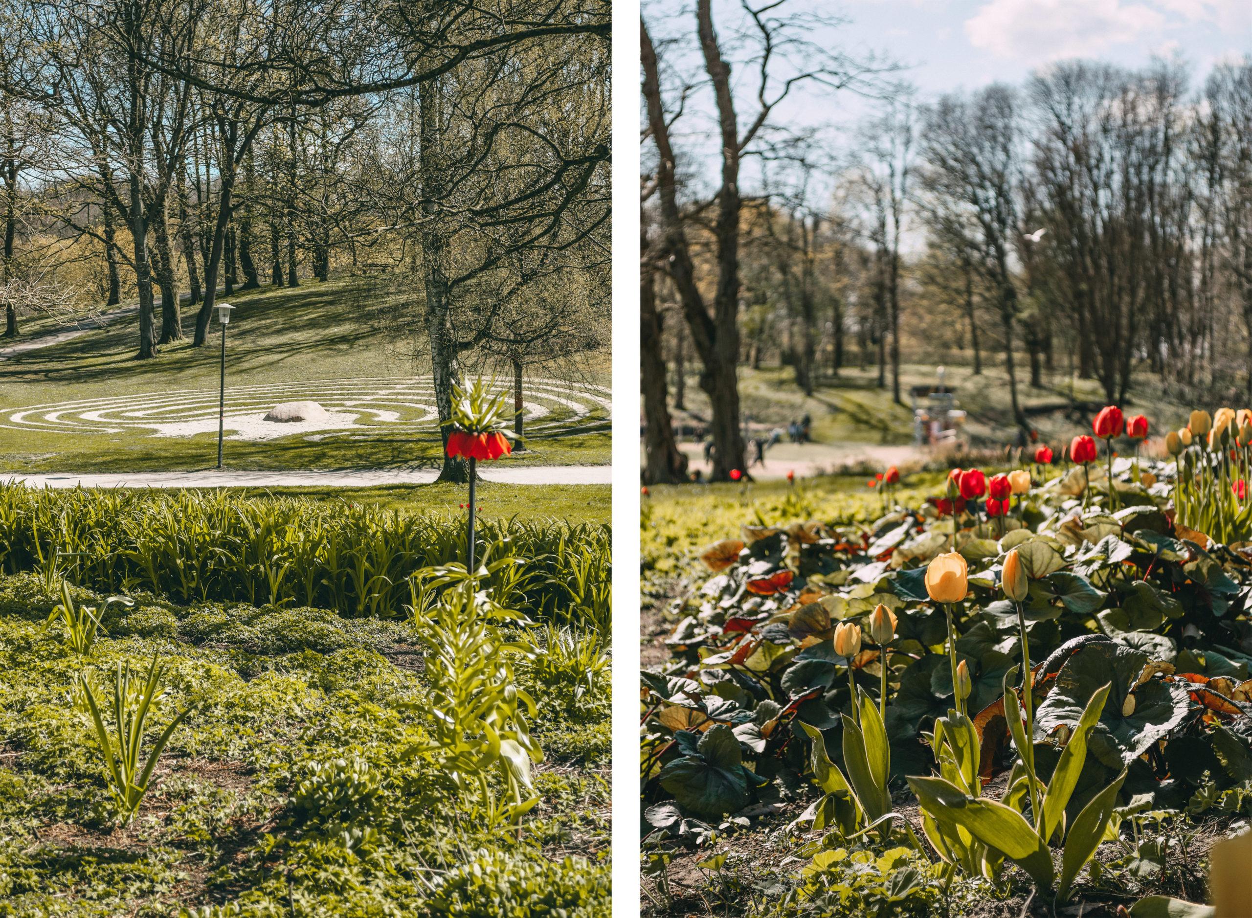 Volkspark Blumen