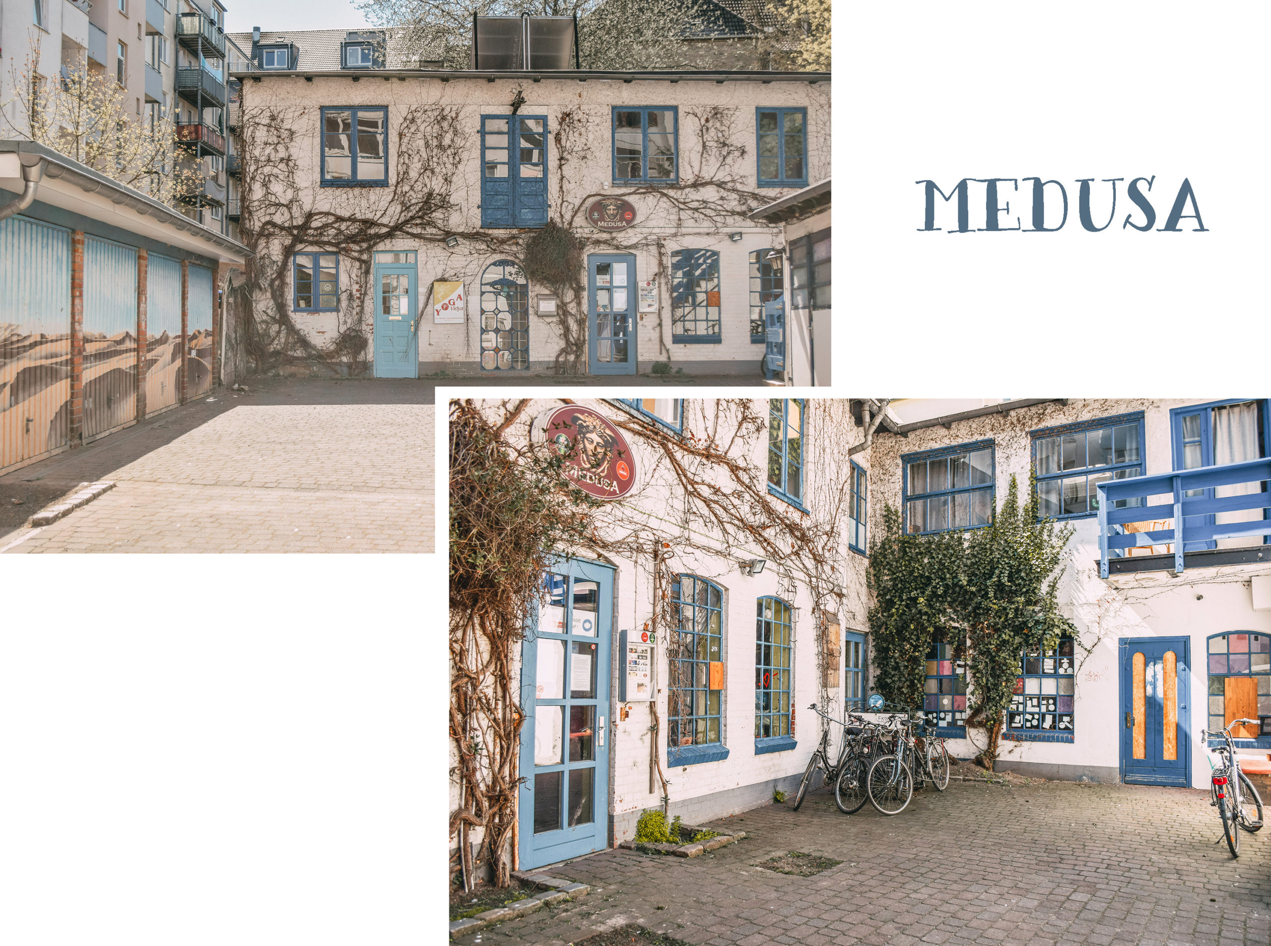 Medisa