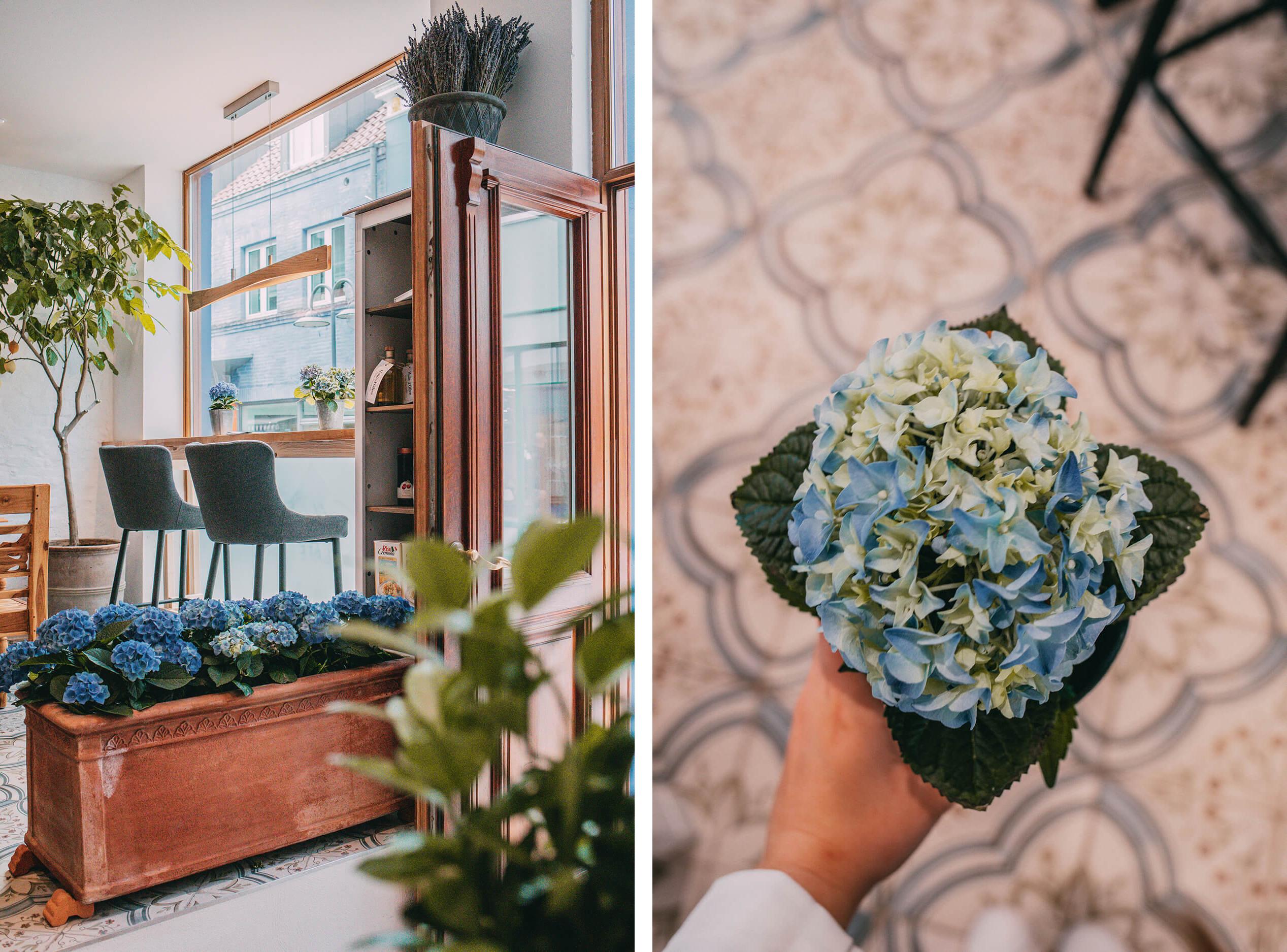 Blumen im Gästeraum