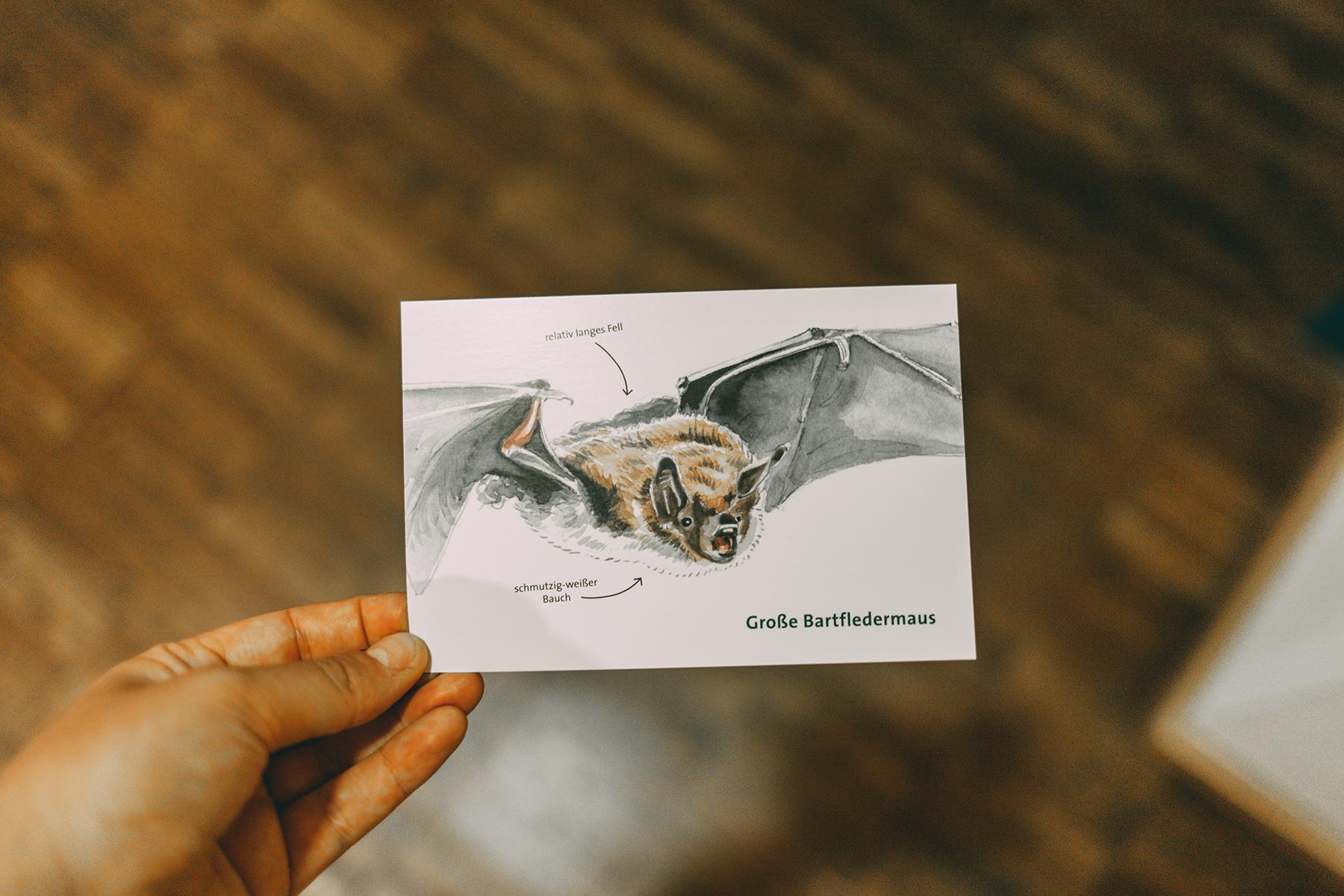 Postkarte Souvenirshop