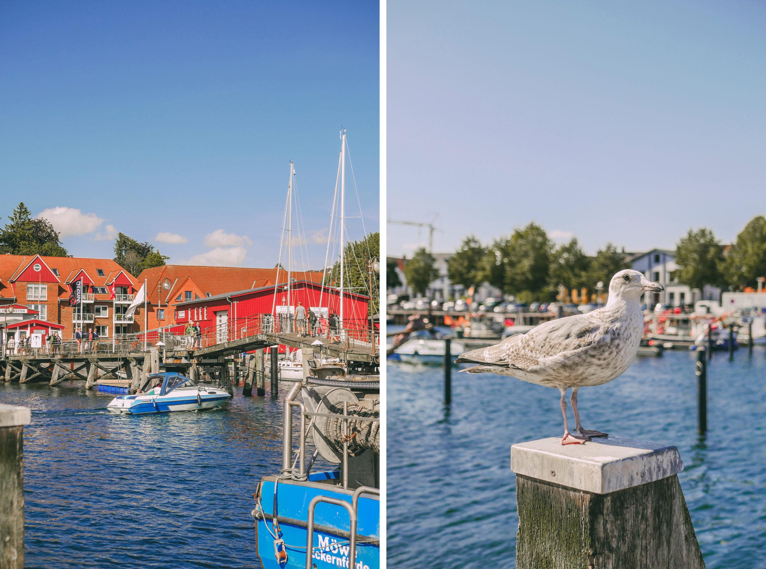 Eckernförde Hafen